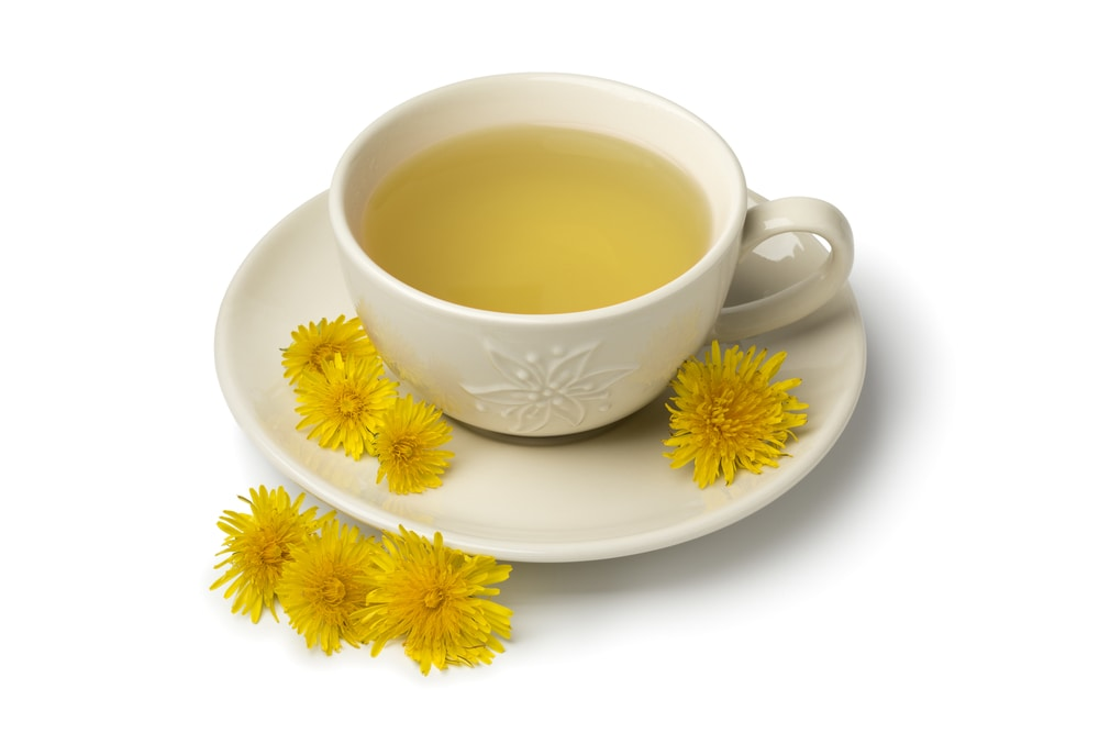 cup of dandelion tea